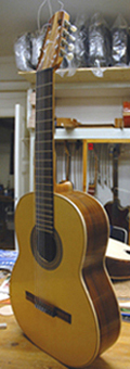 Picture of acoustic guitar - ADR Guitars , Guitar 8-strings
