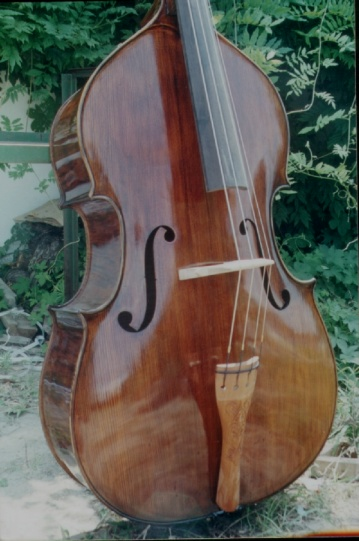 Picture of double bass (contrabass) - New HIMAdouble bass beauty