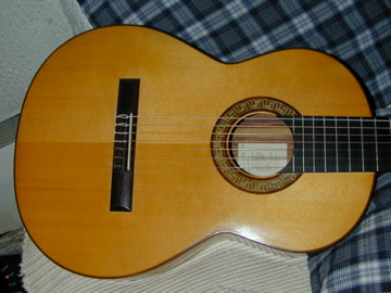 Picture of acoustic guitar - Fanton d'Andon 7 string classical guitar