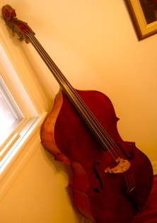 Picture of double bass (contrabass) - Hawkes Panormo 1910
