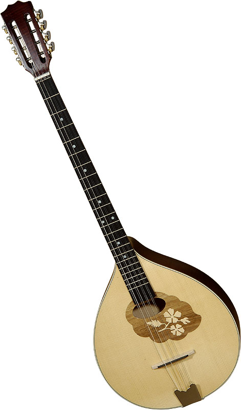 wich irish bouzouki to buy? on The Session
