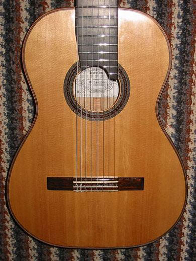 Picture of acoustic guitar - Hippner 8-string, Sitka/Maple