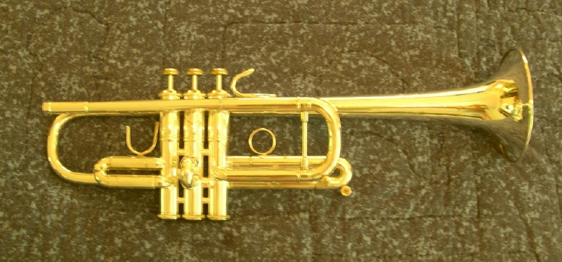 Picture of trumpet - GOLDPLATE your already silverplated TRUMPET if it has few dents / 95% silver