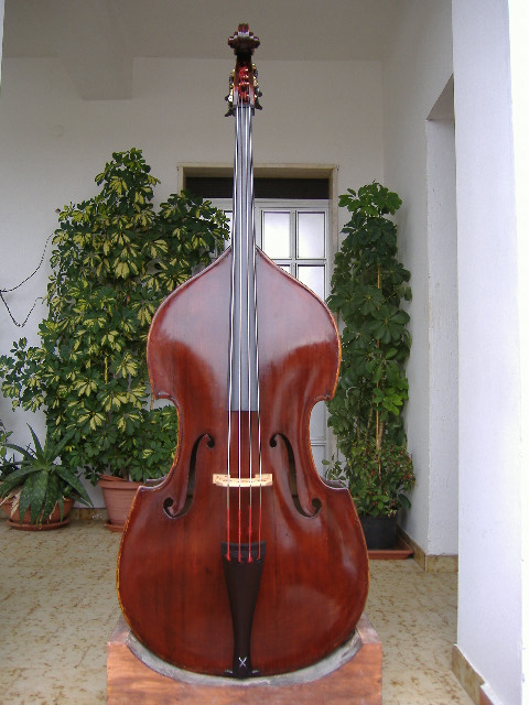 Picture of double bass (contrabass) - old french doublebass