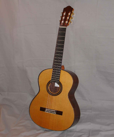 Picture of banjo - Sinomusik flamenco guitar