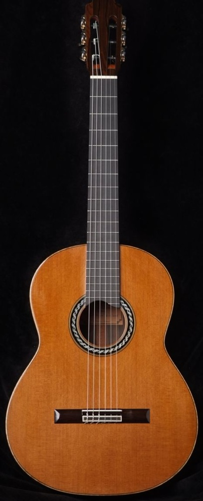 Picture of acoustic guitar - 2008 Peter Oberg for Sale