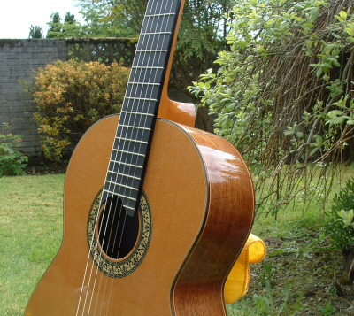 Picture of acoustic guitar - Mateo Crespi of Argentina Cedar Top