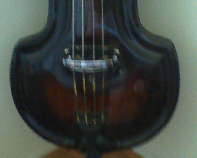 Picture of double bass (contrabass) - Ampeg Baby Bass