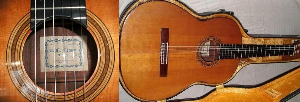 Picture of acoustic guitar - Martin FLEESON  '72
