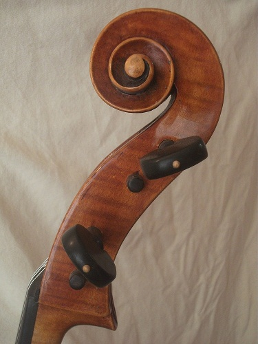 Picture of cello - Marino Capicchioni