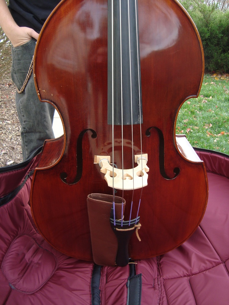 Picture of double bass (contrabass) - Beautiful Upright Bass