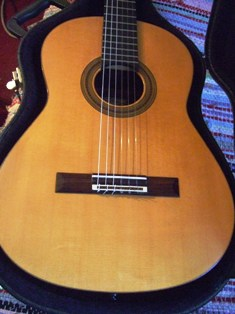 Picture of acoustic guitar - Used Michael Thames