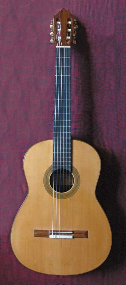 Picture of acoustic guitar - Dominique Field - classical concert guitar