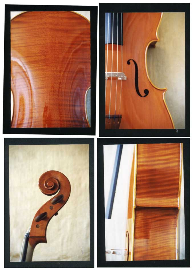 HIMA China (Stradivarius model)